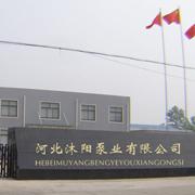 河北沐阳泵业有限公司