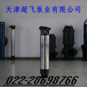 天津超飞热水潜水泵厂